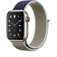Часы Apple Watch Series 5 Edition Titanium