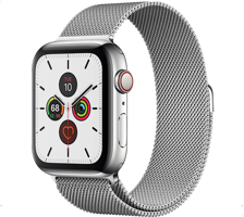 Часы Apple Watch Series 5 Cellular Steel
